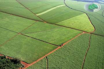 Fazendas Jau/SP