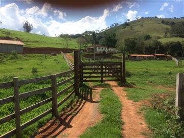 Fazendas Cambui/MG
