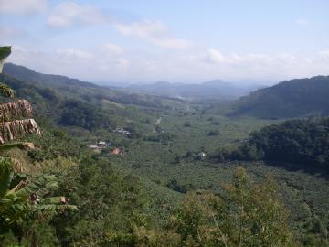 Fazendas Miracatu Consulte-nos
