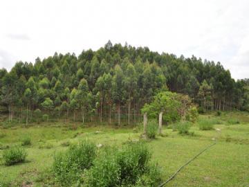 Fazendas Pariquera-acu/SP