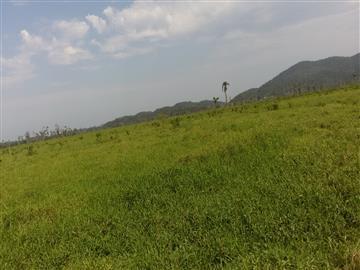 Fazendas Iguape/SP