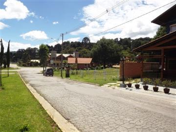 Terrenos Centro R$Consulte-nos