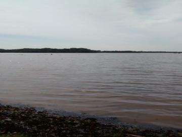Fazendas Tres Lagoas/MS