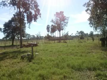Fazendas Corumba/MS