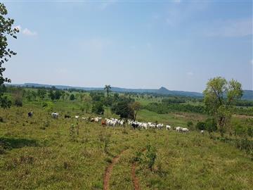 Fazendas Sidrolandia/MS