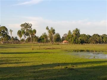 Fazendas Rio Negro/MS