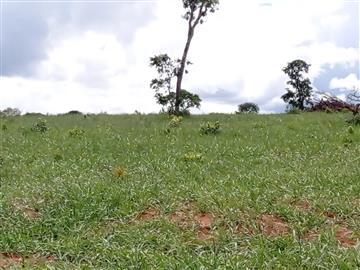 Fazendas Jaraguari/MS