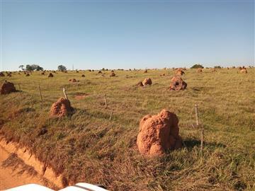 Fazendas Rio Verde de Mato Grosso/MS