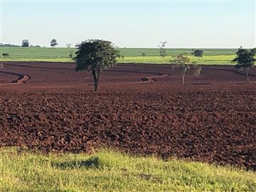 Fazendas Anaurilandia/MS
