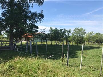 Fazendas Rio Negro Consulte-nos