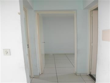 Guarulhos Vila Carmela I 230