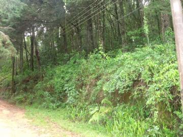 Terrenos  Monte Verde R$240.000,00