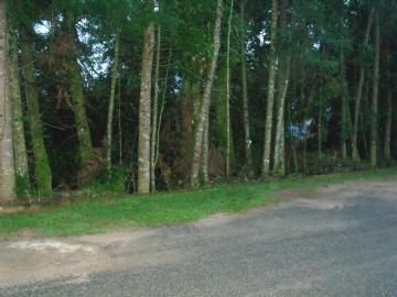 Terrenos  Monte Verde R$Consulte-nos